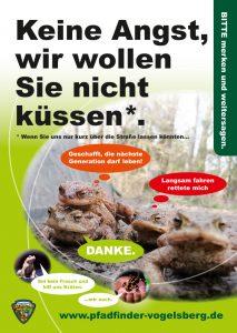 Amphibienschutzflyer-EPV_Vorderseite